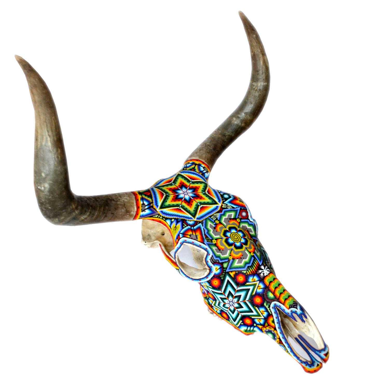 Toro - Skull bull