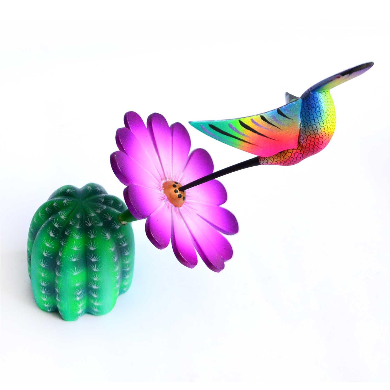 Cactus - Colibrí - Hummingbird