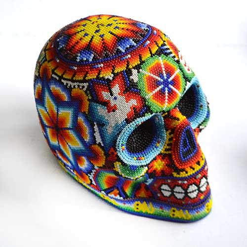 Craneo - Skull (LM)